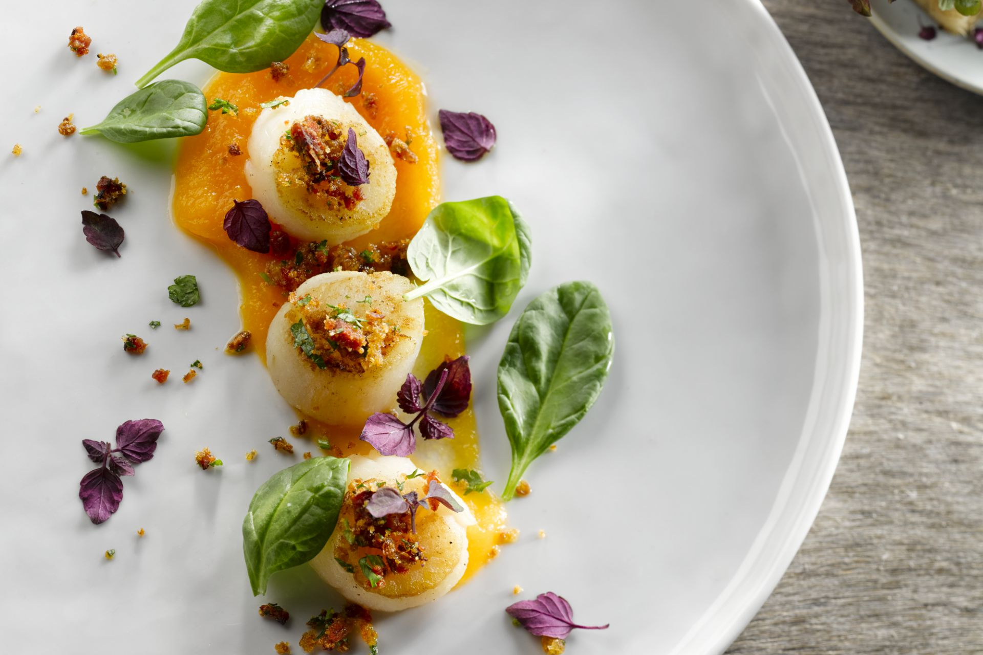 Sint-Jakobsvruchten met zalf van butternut en chorizocrunch