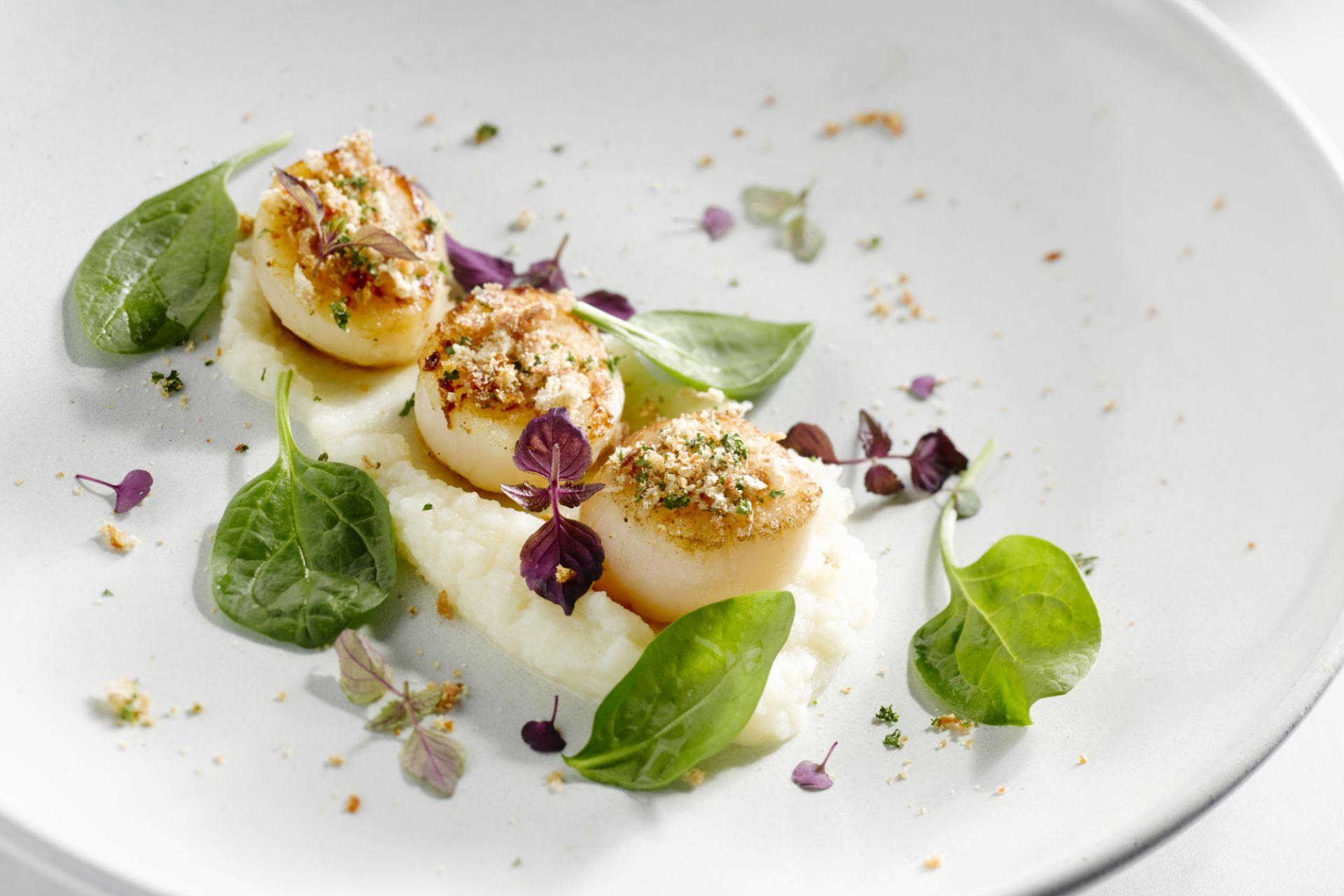 Sint-Jakobsvruchten met knolselderpuree en crunch van prosciutto
